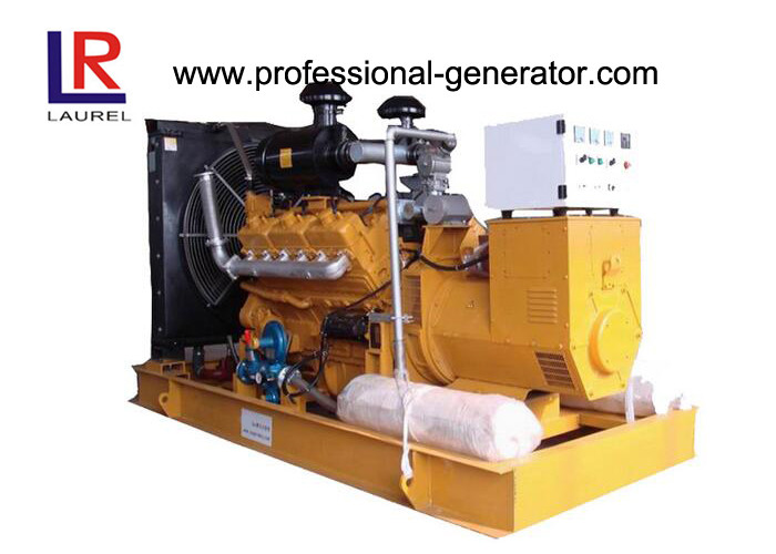 Natural Gas Powered Generator with DC24V Electric Starting / Stamford Alternator